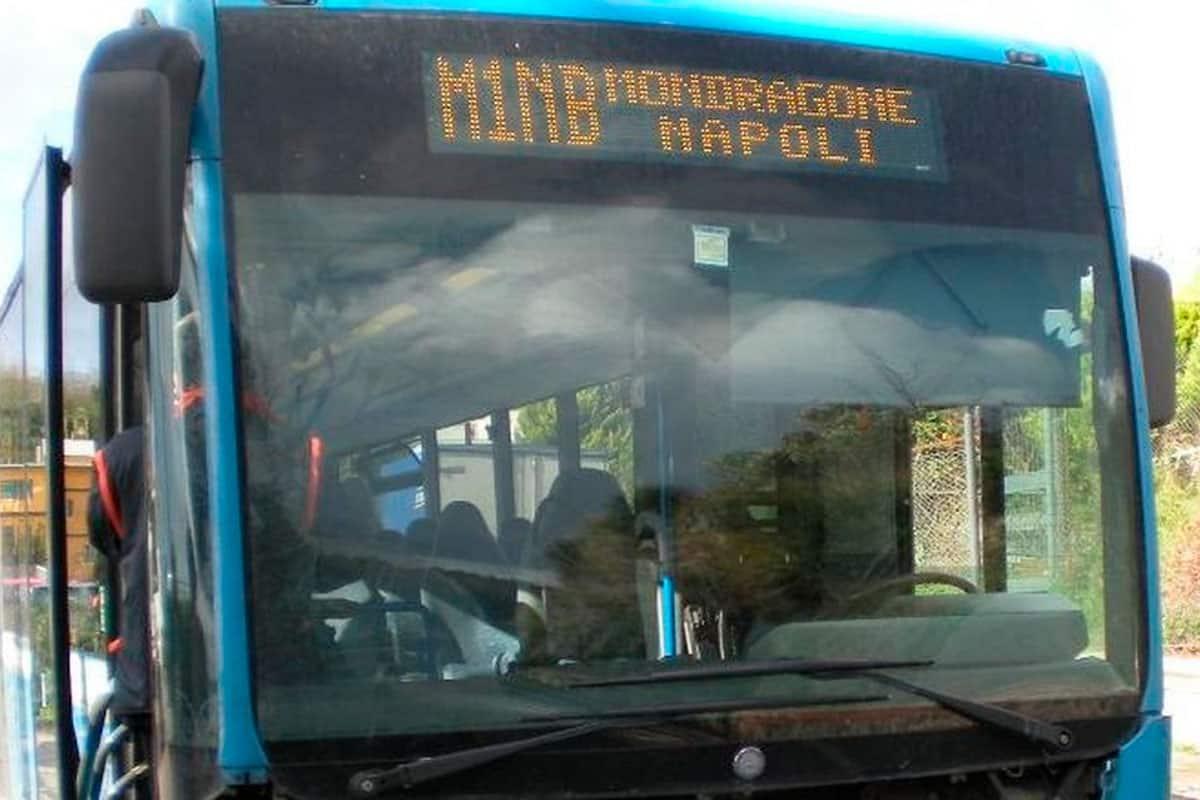 informareonline-ctp-bus
