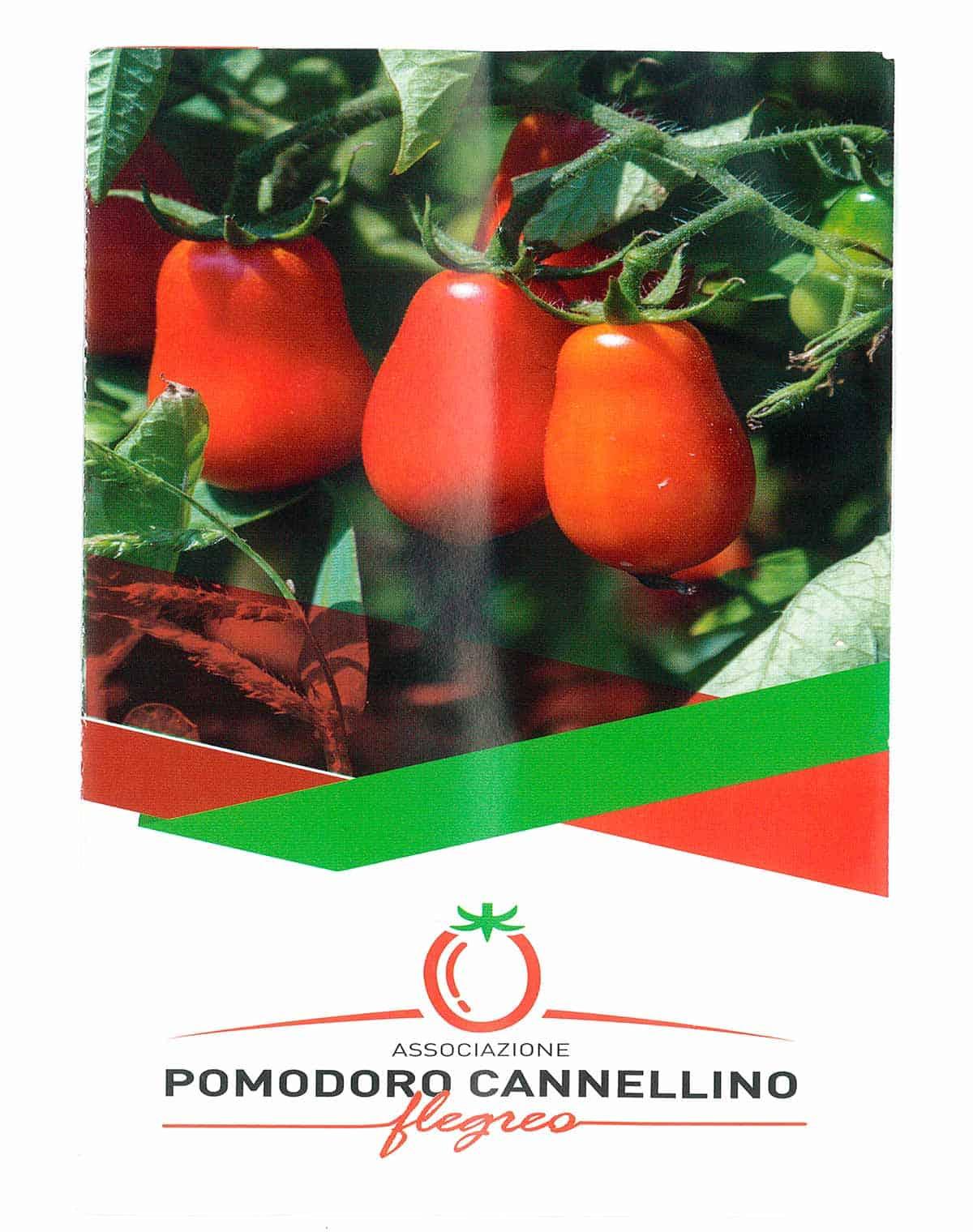 informareonline-pomodorino_cannellino-4