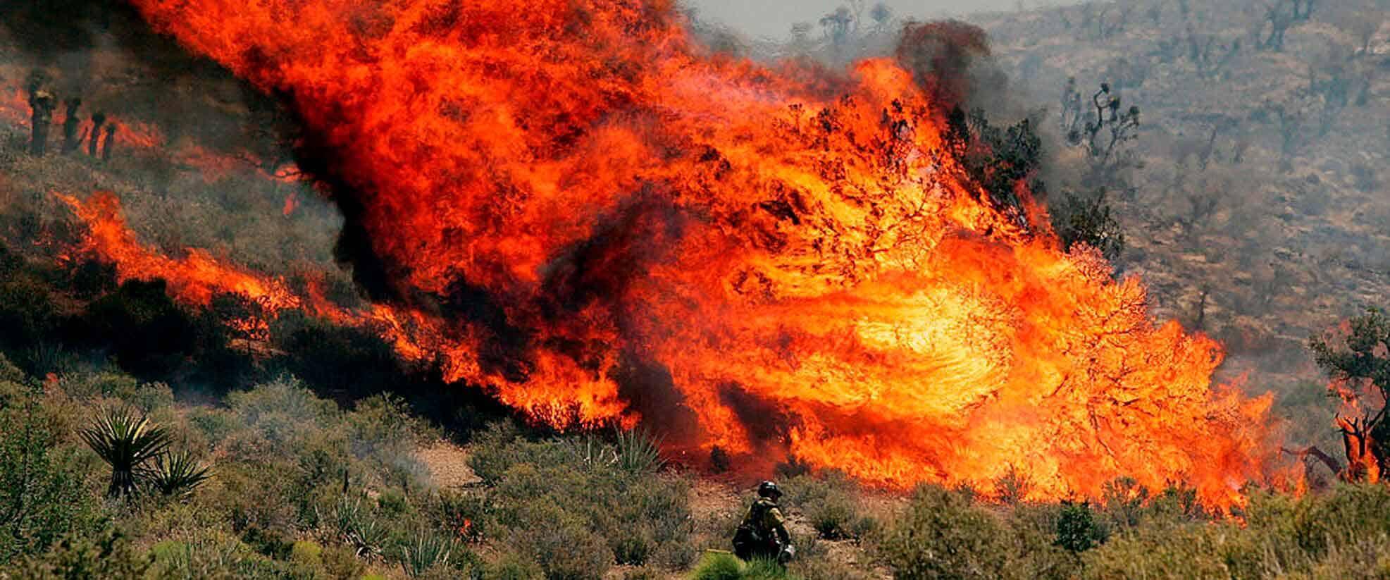 informareonline-af3-incendi