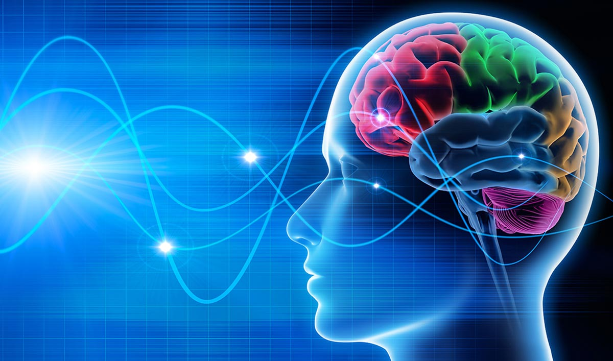 informareonline-neuromarketing-4