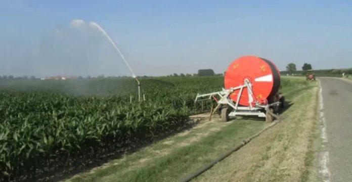 informareonline-acqua-irrigazione-campi