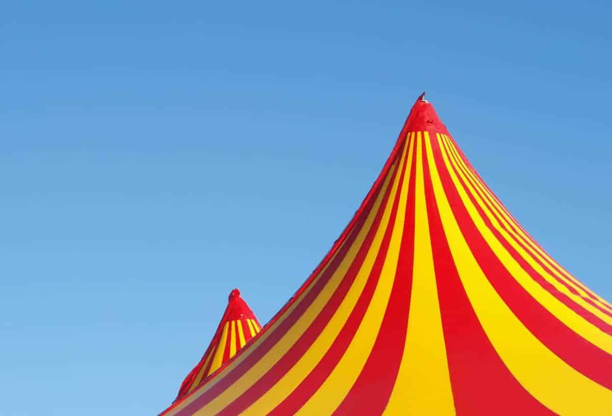 informareonline-progetto-fantasy-circus-1