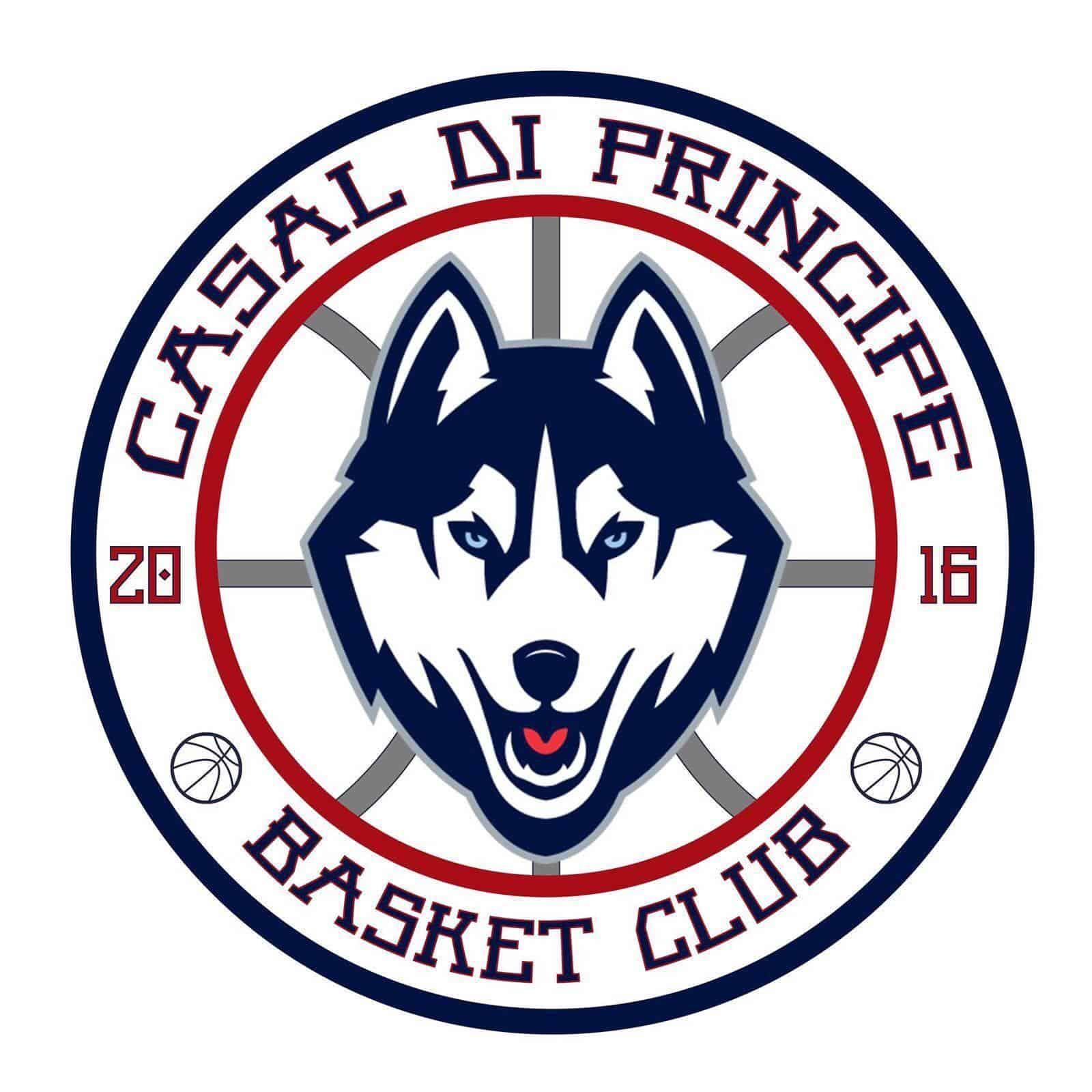 informareonline-husky-basket