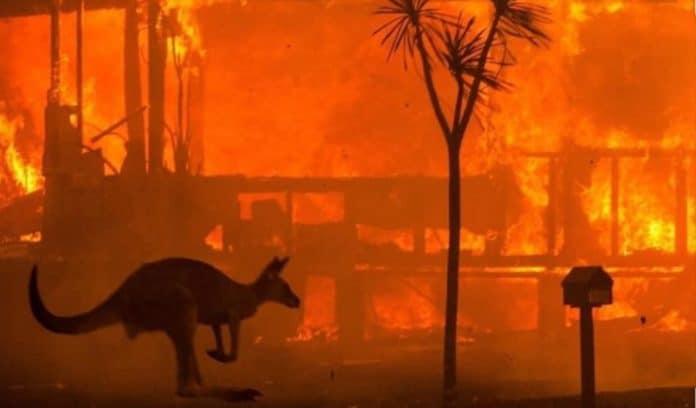 informareonline-incendi-australia