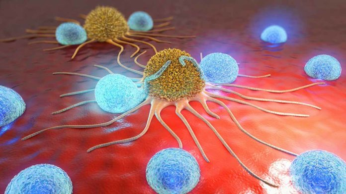 informare_online_tumore_microscopio-ridotta
