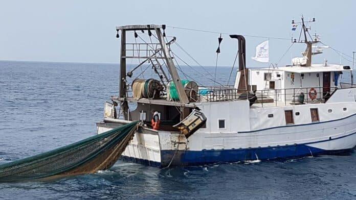 informareonline-pesca-plastica