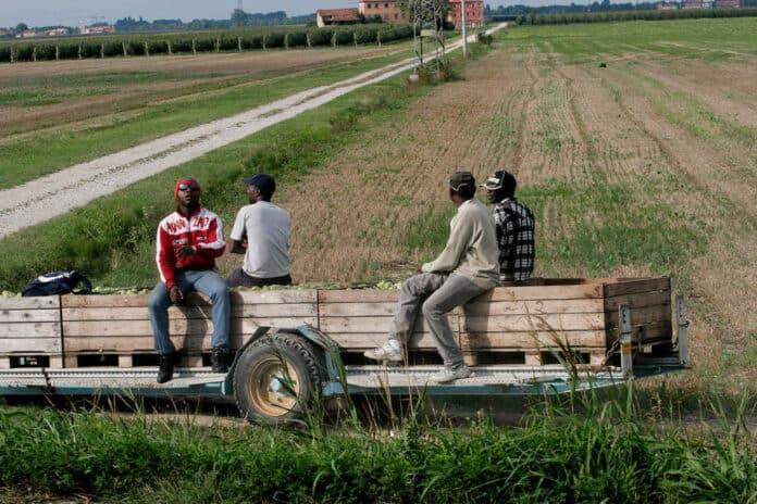 informareonline-sanatoria-migranti