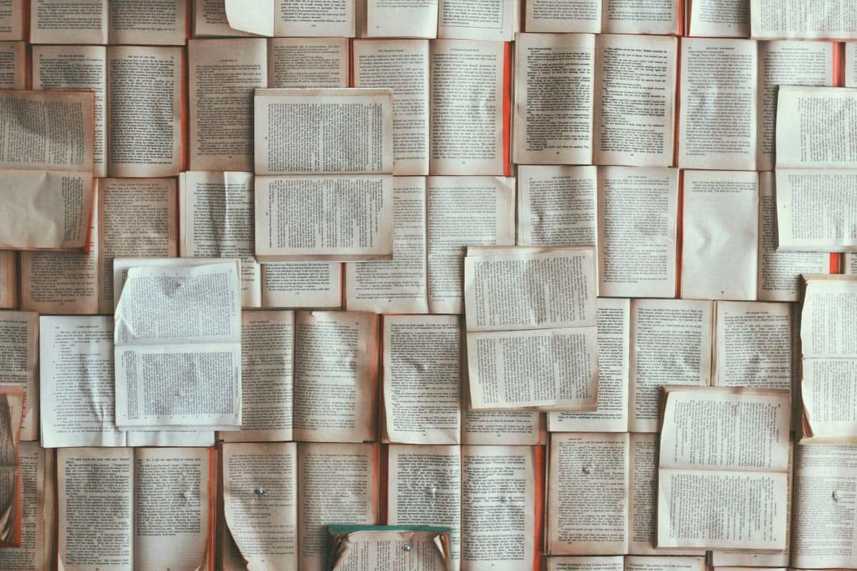 informareonline-la-riscoperta-della-lettura