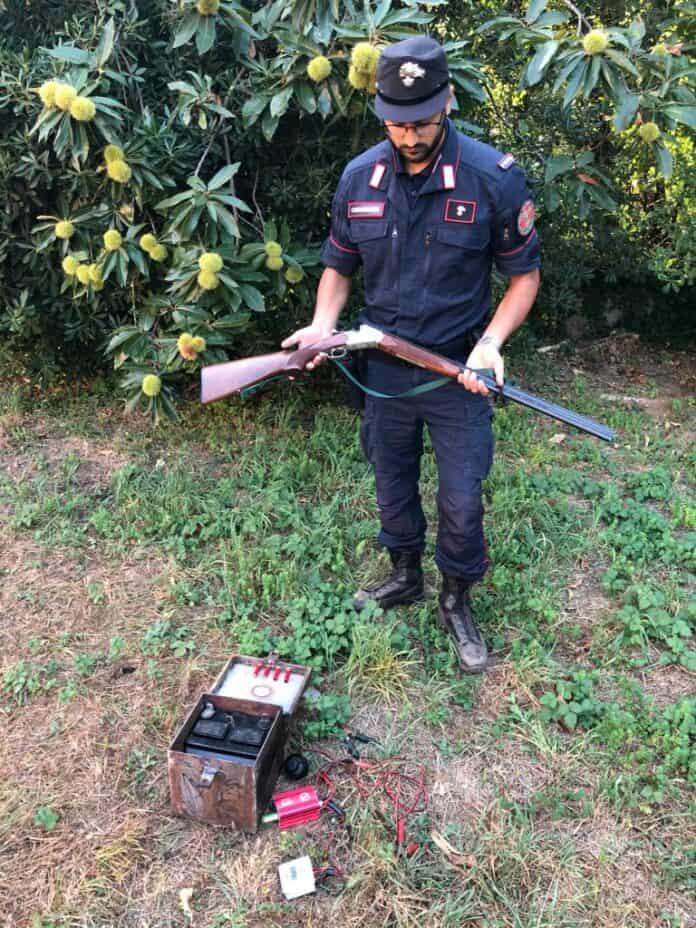 informareonline-carabinieri-forestale-bracconieri