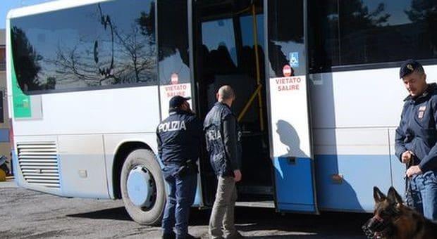 Informareonline-Autobus