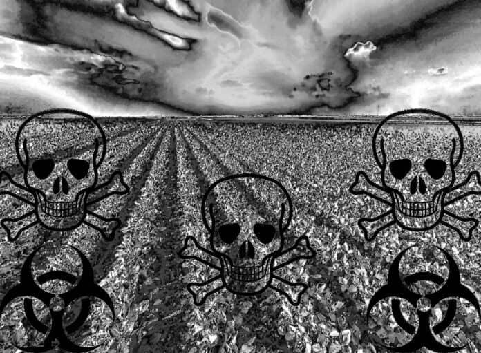 informareonline-contaminati-3000-ettari-di-terreni-agricoli-del-nord-italia
